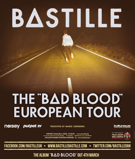 Bastille: Live 2013